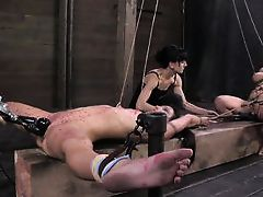 cheap sluts getting punished