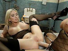 lesbian bitches love anal