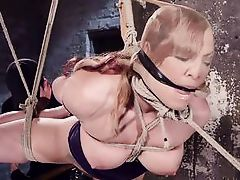 sinful dahlia got bonded strongly