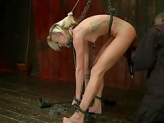 blond courtesan fixed firmly and punished